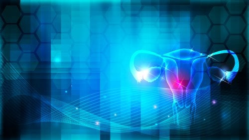HISTEROSCOPIA GINECOLOGIA DIRECTORIO MEDICO DE CHETUMAL GINECOLOGIA CANCER EN LA MUJER CANCER CESAREA PARTO HUMANIZADO