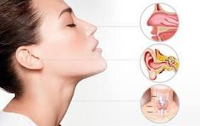 otorrino directorio medico de chetumal nariz cuello orejas oídos cirugia de cabeza y cuello otorrinolaringologia