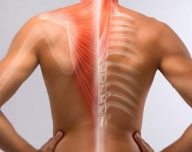 dolor de espalda directorio medico de chetumal chetumal doctores chetumal dolor de espalda , dolor de cuello, dolor de cabeza , dolor de rodilla